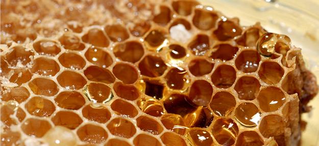 Blog ADNartesano - Propiedades de la miel de abeja - Panal