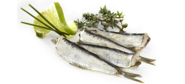 Propiedades de las conservas de pescados - Blog ADNartesano - Sardinillas