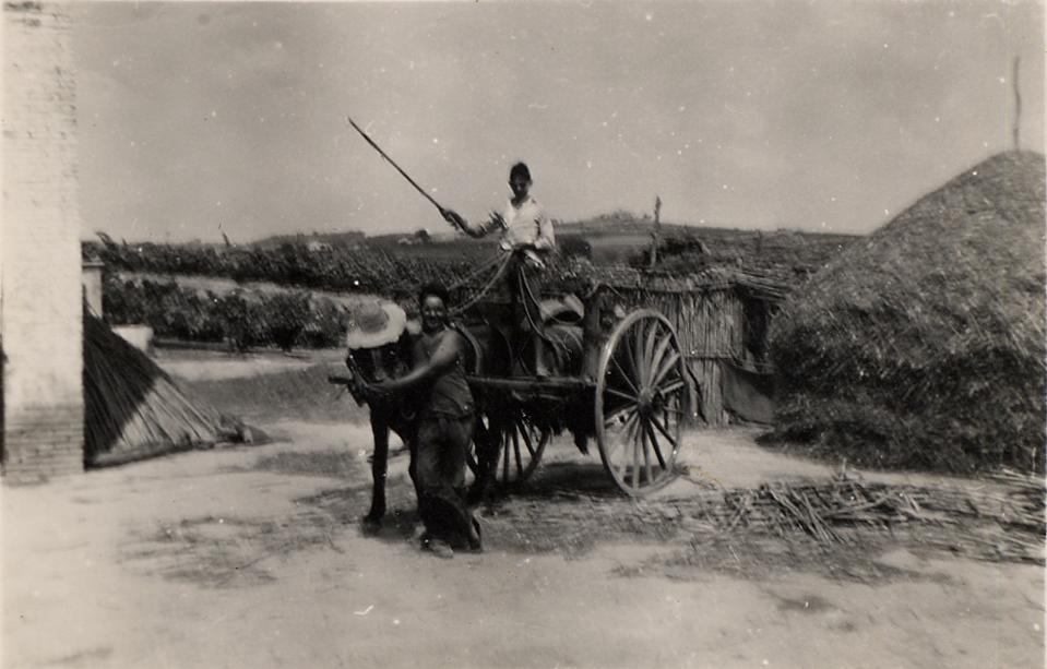 ADNartesano - Alsina&Sardà - Historia